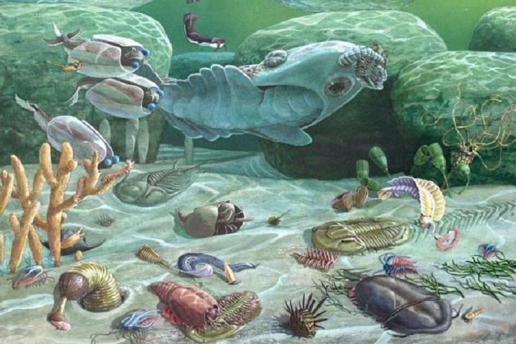 Evolución geológica del territorio